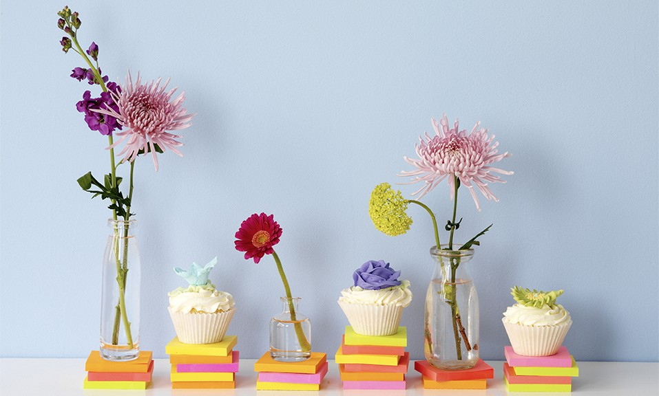 Daisies and cupcakes