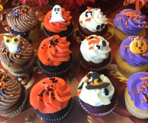 Halloween Mini Cupcake Dozen Gift Pack