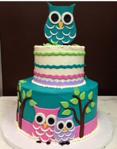 Baby Shower Owl Cake
